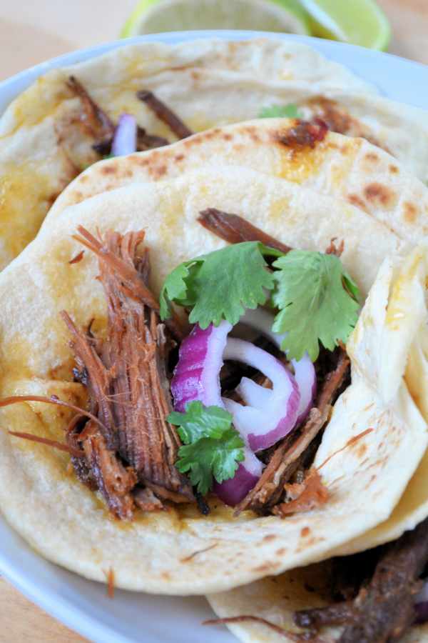 Spicy Beef Brisket Carnitas