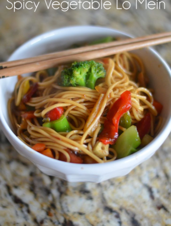 Spicy Vegetable Lo Mein by Mooshu Jenne #lovemyvinegar #shop #CollectiveBias