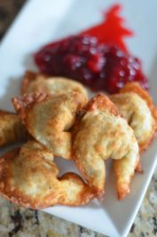 Stuffed Wontons - Mooshu Jenne #TasteTheSeason #ad Made with wontons, stuffing, and cranberry sauce