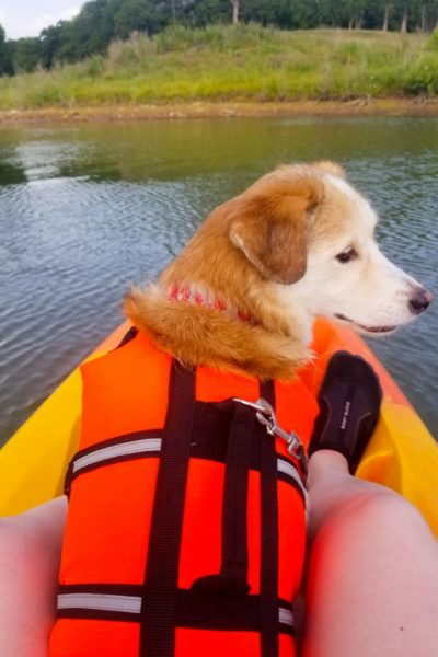 10 Must Have Items For Kayaking