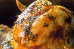Citrus Herb Roast Turkey